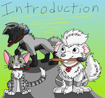 1. Introduction by racingwolf