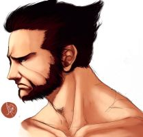 Wolverine Colored by Animixter