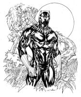 Black Panther in Wakanda fields by SpiderGuile