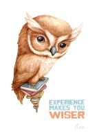 Experience makes you Wiser by ClaireAdele