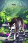 .: Searching :. by ancarie-bluewolf
