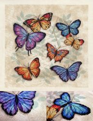 Butterfly Profusion by pinkythepink