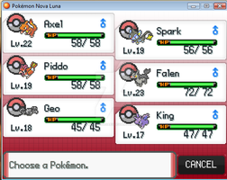 My team after 2 Badges - NovaLuna by RayquazaGaby