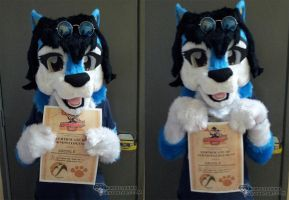 Krys-Wolf Fursuit 2.0 and AMG Certificate by krystlekmy