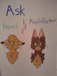 Ask my main ocs!!! by blurryfeather