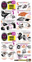 How to draw BIRDS HEADS tutorial by STUDIOBLINKTWICE