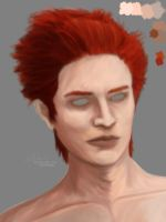 Glyphron's Edrear Hawke - Colors and Hair WIP by Auridesion