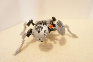 the parg'n spider by ethan-k793