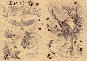 THE GRIFFIN by Zellgarm