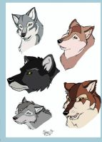 The Wolf adults by DeyVarah
