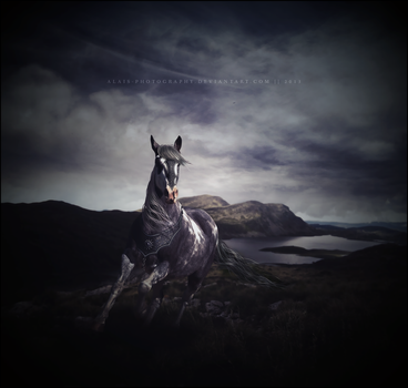 there is won and there is lost. by alais-photography