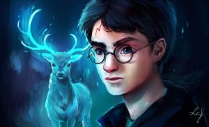 Harry Potter by Ludmila-Cera-Foce