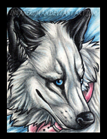 White ACEO Gift by InsaneRoman