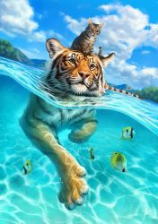 A small swim for a tiger by Lhuin