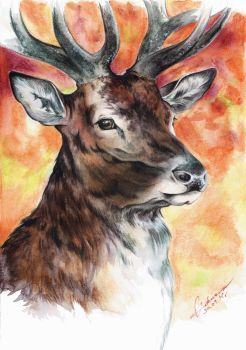Stag by Tenrou-RT