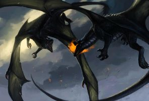 Dragon Fight by Allagar
