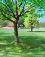 plein air tree by turningshadow