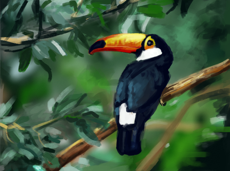 Tropical Bird 1 by 0x4fffwhite