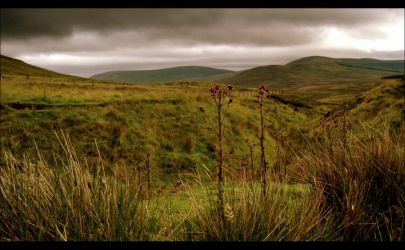 The Sperrin Mountains II by younghappy