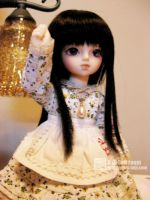 20090521-2 by RC-dollroom