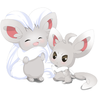 Minccino and Cinccino