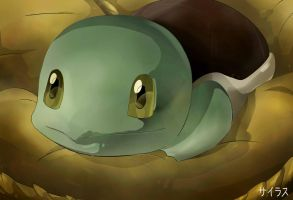 Pokemon Squirtle Silvestre by Sorocabano