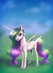 Wide Open Field by NadnerbD