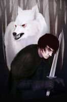 Jon Snow and Ghost by noxy24