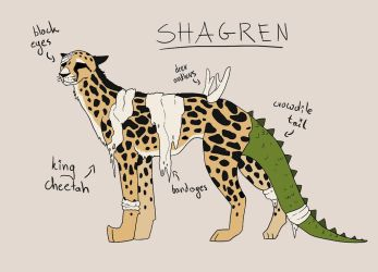 Shagren reference 2018 by Shenree