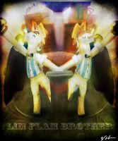 The Flim Flam Brothers by Tarantad0