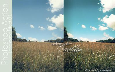 Landscape Effect PS Action by IGotTheLook