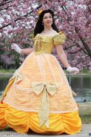 Belle from Broadway Beauty and the Beast 2 by aimeekitty