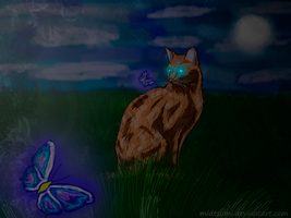 Night Butterfly by MidTsumi
