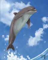 Leap of Life by namu-the-orca