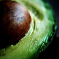 avocado.. by ABOUNDandDRIFTING