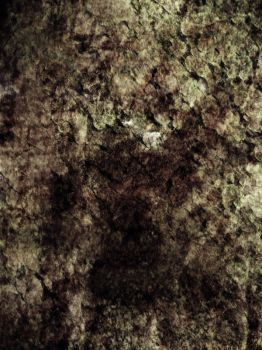 Texture 06 by NinStock