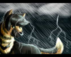 Those Stormy Days by DarkWolfArtist