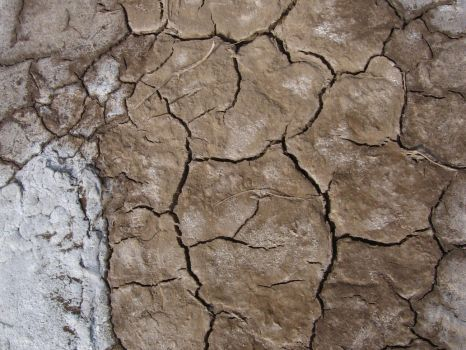 Desert Ground 26021637 by StockProject1