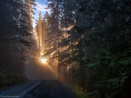 Distant Promise by IvanAndreevich