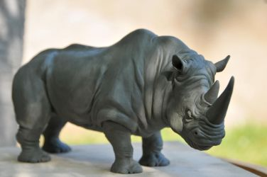 Rhino sculpt by Heliot8