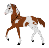 N2971 Padro Foal Design for theliondemon-kaimra by casinuba