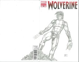 Wolverine 300 Sketch Cover by Ace-Continuado