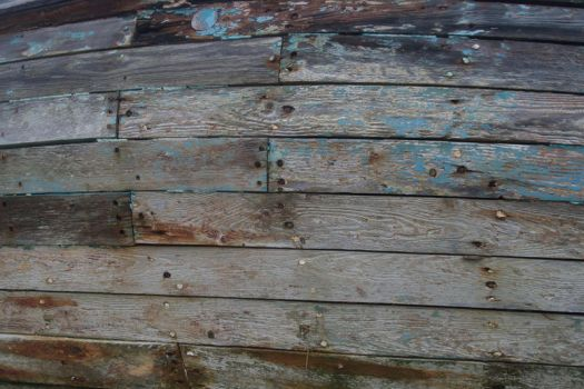 Texture - Rotting Wood by ManicStock