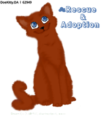 Russet Kitty :3 by Mystic-Arrow