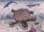 Giant softshell from Pakistan, colored (2014). by jwmorenob