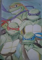 Turtle power sketch by Hotaru-oz