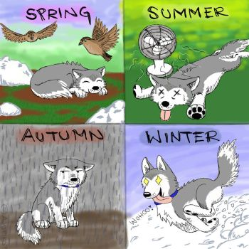 Seasons by Ajuriko