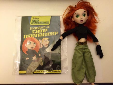 my kim possible action figure and novelty book by montrain101