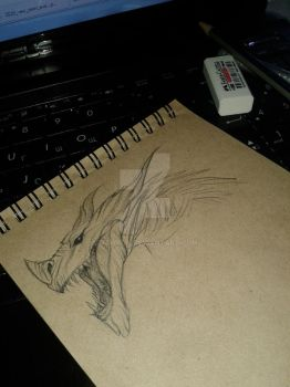 Dragon Sketch by Dawron
