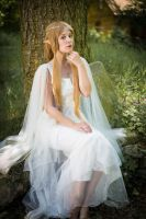 Elven Princess 05 by Fuchsfee-Stock